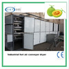 automatic tunnel dryer for honigmelone slice /hot air/mesh belt