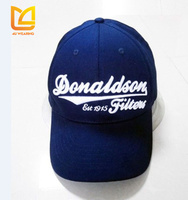 Promotional custom LOGO embroidery golf flexfit baseball hat and cap