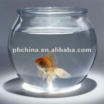 An 224 Large Clear Acrylic Fish Bowl Perspex Goldfish Bowl