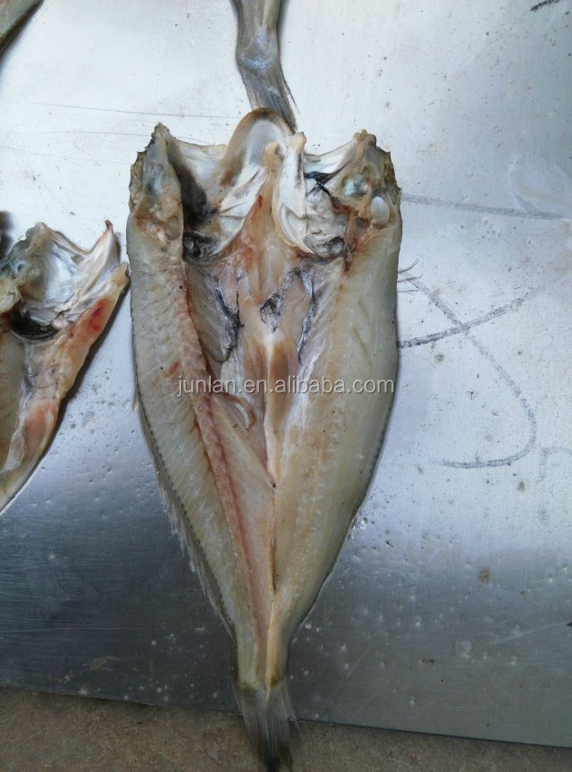 Easy use tilapia fish scaling gutting removal fish fillet for Fish fillet machine