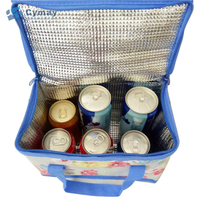 Customized Brand Top Quality promotional Cooler Bag foldable insulated Box Bottle lunch bag