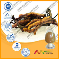 GMP&ISO Extract for Deer Penis Cordyceps Pill