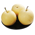 Top quality sweet juicy Chinese fresh crown pear