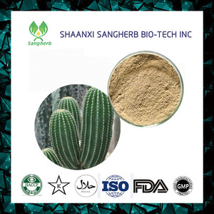 GMP factory supply Cholla Stem extract Cholla Stem extract powder Opuntia dillenii Haw extract