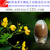 Manufacturer sales semen cassiae torae extract powder