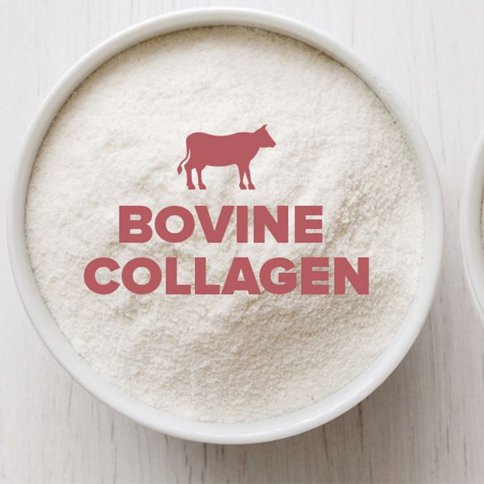 Wholesale Hydrolyzed Bovine Collagen Production Supplements With Reasonable Price