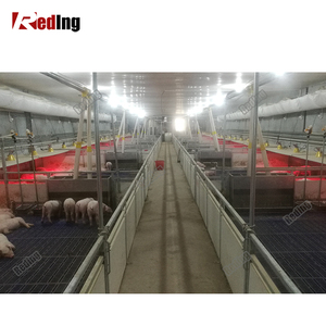 Morden effective farrowing stalls equipments for sow piggery house design for nursery pigs