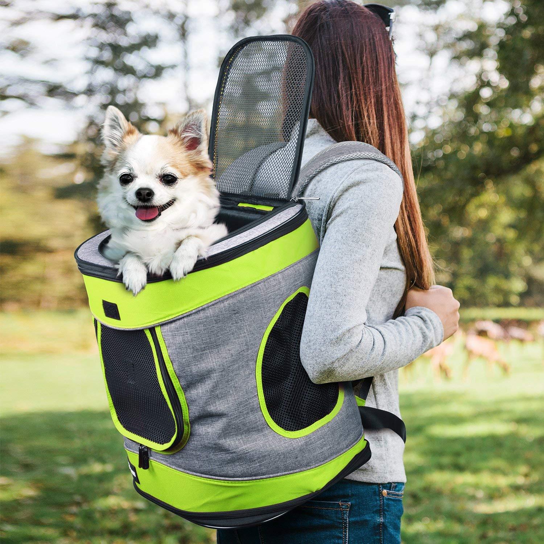 Mochila para Mascotas Carrito 2 en 1 Bolsa de Transporte Malla Completa Transpirable Perros Gatos para Uso al Aire Libre Viajar Senderismo Camping