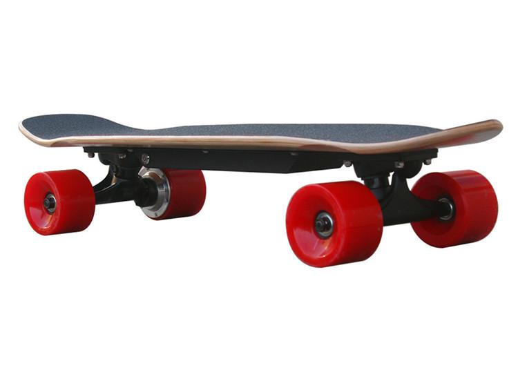 Oem Logotipo Impresso Profissional Mini longboard/Canadá Maple Skate