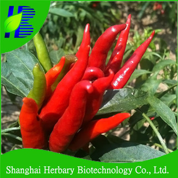 high yield vegetable seeds for planting paprika seeds for sale