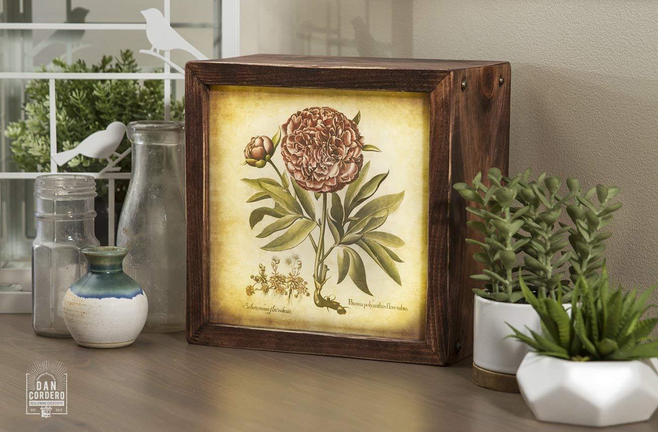 Edison Lightbox | Botanical | Light Box | Table Lamp | Desk Lamp | LED | Lamp | Plants | Flowers | Botany
