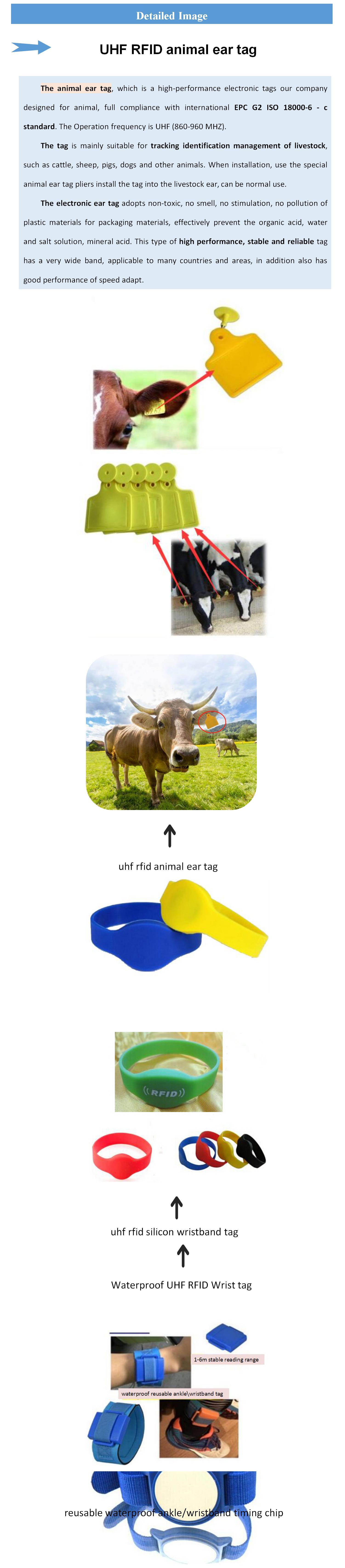 Livraison gratuite étiquette animale échantillon Gen2 UHF RFID Étiquette D'oreille 865-868 mhz longue portée d'identification du bétail moutons bovins suivi