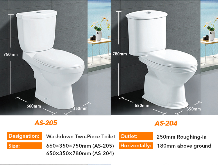 Flush Wall Hung Toilet Bowl