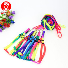 Colorful Rainbow Collar Dog Pet Harness Leash Walking Harness Chumbo Macio Colorido e Durável Tração Corda <span class=keywords><strong>De</strong></span> Nylon 120 centímetros