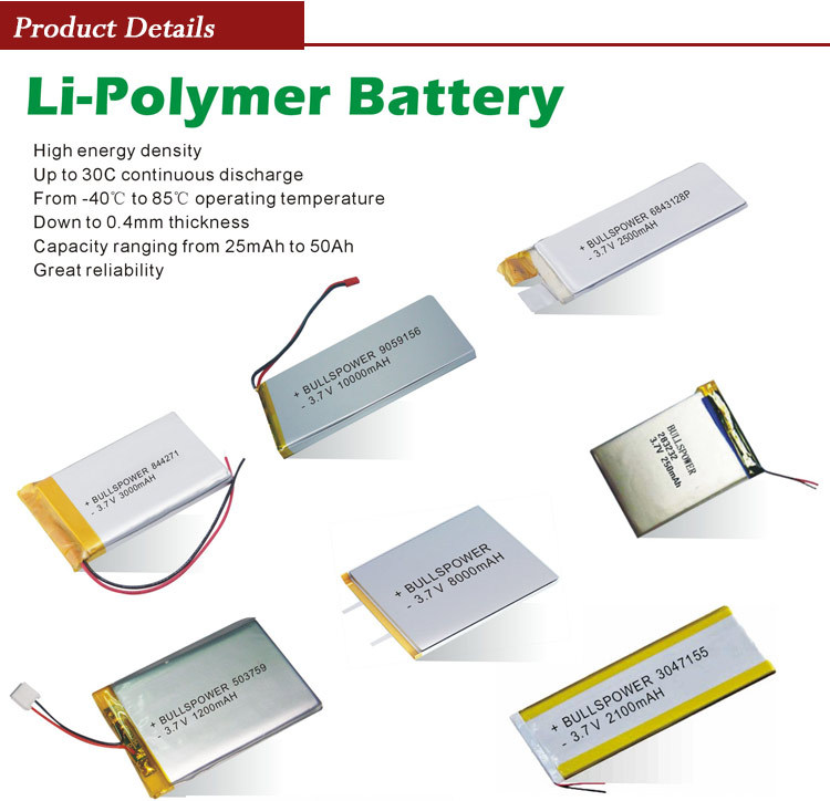Lithium Polymer Battery : Li ion battery pack v mah volt rechargeable