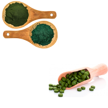 Spirulina-Energie Immun Knochen <span class=keywords><strong>Struktur</strong></span> Nervensystem-Superfoods-OEM/Private Label (ISO, HACCP, ORGANISCHE, HALAL)