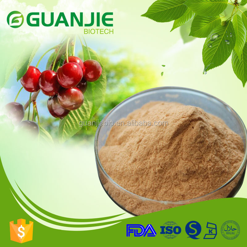 Natural Acerola Cherry Extract Powder 17% 25% Vitamin C UV/HPLC