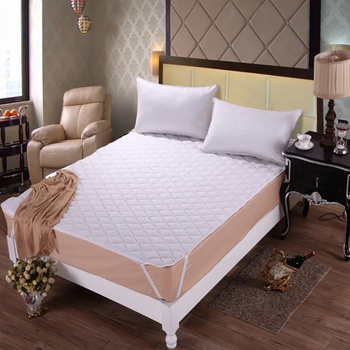 Wholesale Waterproof Bed Bug Proof Mattress Protector/mattress cover on promotion