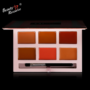 High Quality Professional 6 Color Long Lasting Concealer Palette Face Makeup Cosmetic Concealer