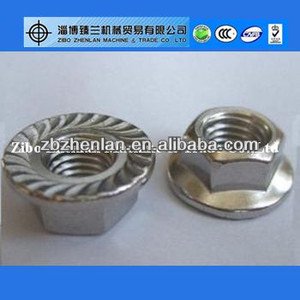 Stainless Steel Hex Serrated Flange Nut M18