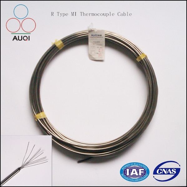 High Temperature Pt100 fuel sensor with rtd cable