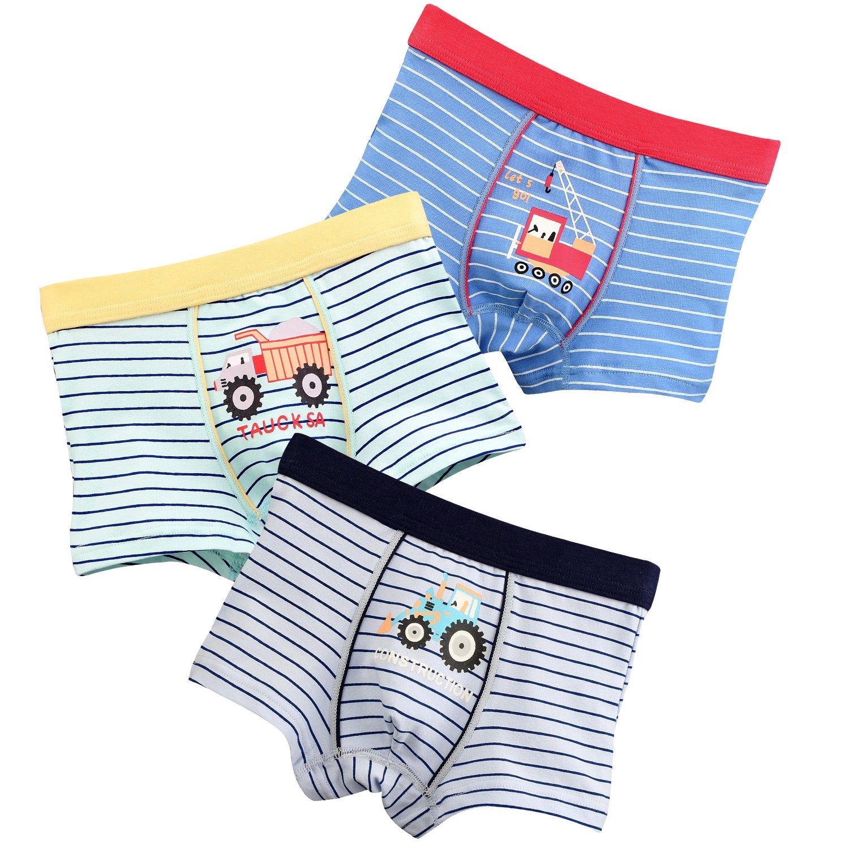 5T-2XL INTERESTPRINT Boys Pink Swan Boxer Brief Underwear
