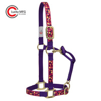 Personalized Fashion Horse Halter For Sale