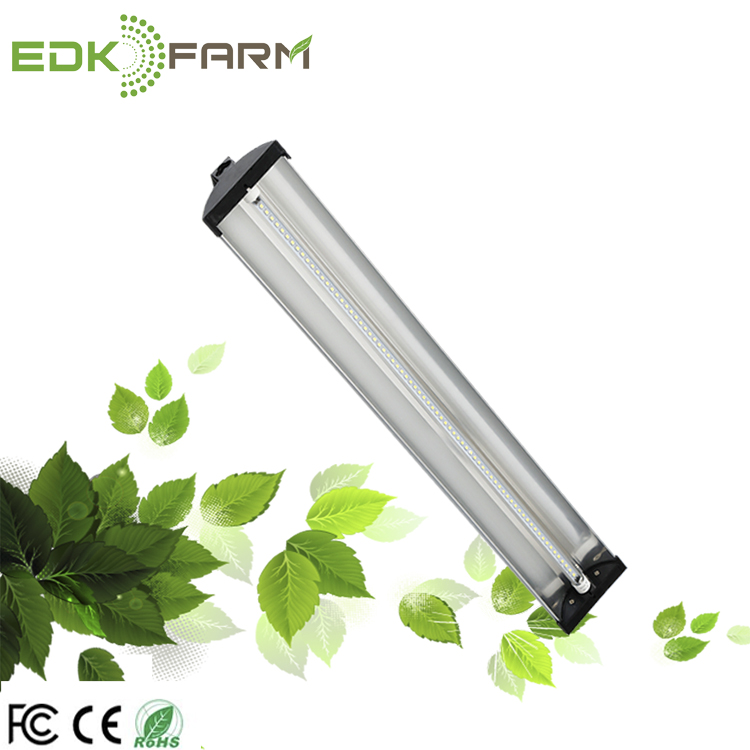 China Gutter Hydroponic Supplies Dropship Products Orchids Phalaenopsis  Seeds Tissue Culture Greenhouse Led Lighting - Buy Greenhouse Led
