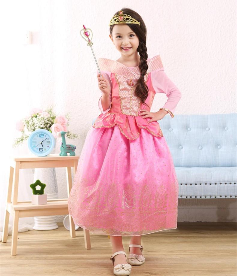 102e3cb4e8e Vintage Sleeping Beauty Princess costume spring autumn pink girl dress  Princess Aurora Dresses for girls party Costume