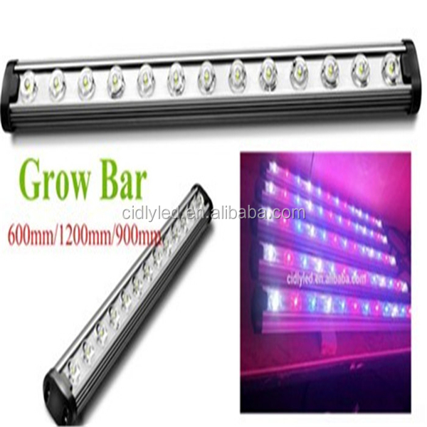 The experienced growers recommending product waterproof greenhouse light Cidly uv ir led strip grow lights