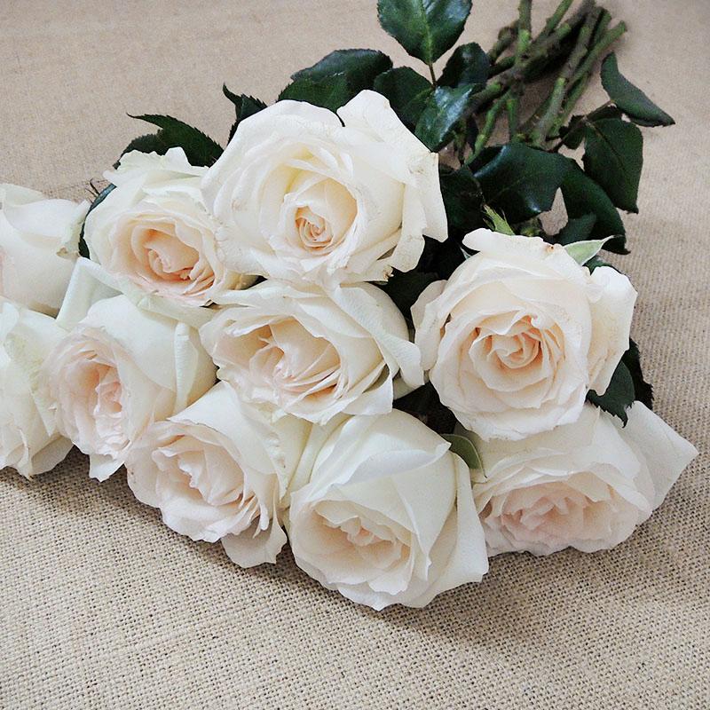Wholesale fresh cut rose flowers for wedding view wholesale price wholesale fresh cut rose flowers for wedding mightylinksfo