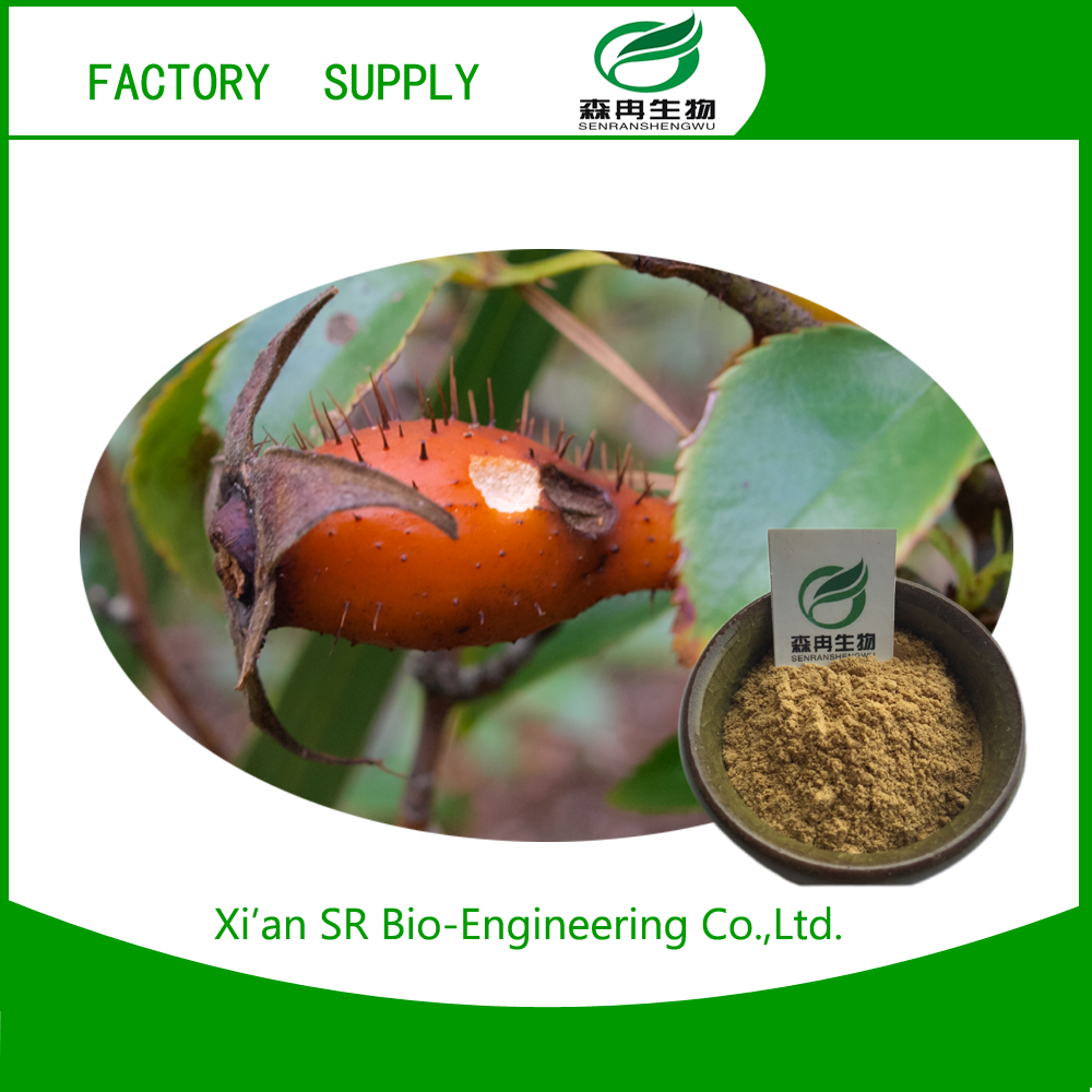 Low Price organic rose hip extract powder wholesale online