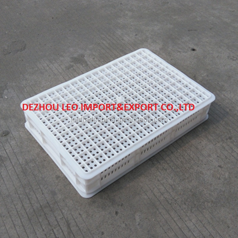 plastic crate for freezer for freezing chicken parts