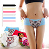 China Supplier Seamless Hipster Print Cute Cat Hot Sex C-String For Women