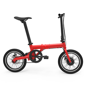 Adult Folding Ebike 250W Electric Bike with Aluminum Alloy Frame