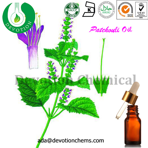 Plant Herb Extract 100% Pure Natural Patchouli Essential Oil,OEM oil
