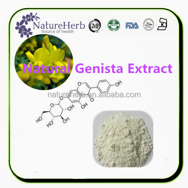 Bulk Supply 98% Genistein Powder/ Best Price Pure Genistein