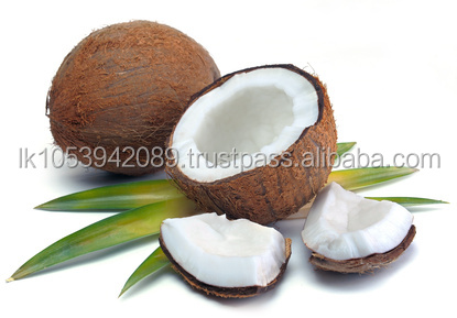 Organic Cold Pressed Virgin Coconut Oil Lowest Price Good Quality