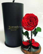 Custom made tube gift box, cardboard glass dome box, bottle packaging boxes