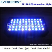 evergrow led-<span class=keywords><strong>verlichting</strong></span> it2040 55*3w <span class=keywords><strong>pl</strong></span> 120w <span class=keywords><strong>aquarium</strong></span> lamp