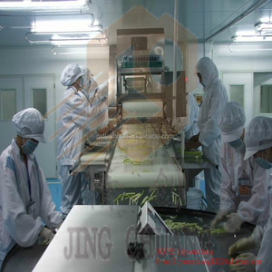 Fruit&Vegetable Processing Line/IQF Vegetable Processing Line/Vegetable Washing Line