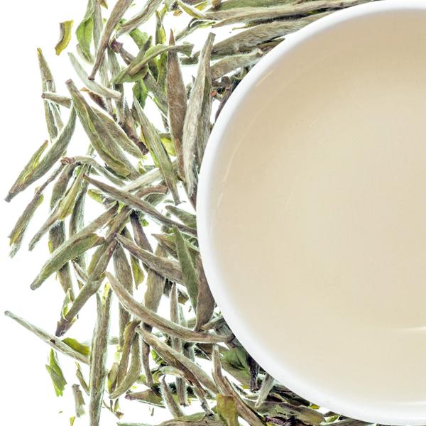 FDA Certificate Chinese EU Standard White Tea Needle - 4uTea | 4uTea.com