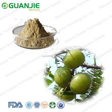 100% pure and organic annona muricata supplier