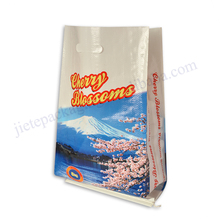 Top quality custom printed food grade pp woven flour / grain / wheat / corn / rice bag 5kg to 50kg with handle an cheapest price