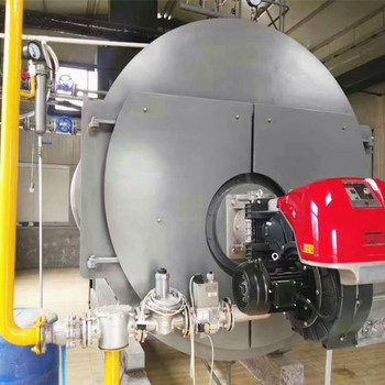 Gas Oil Fired Steam Boiler Price Horizontal Type Fire Automatically Natural Or Sel