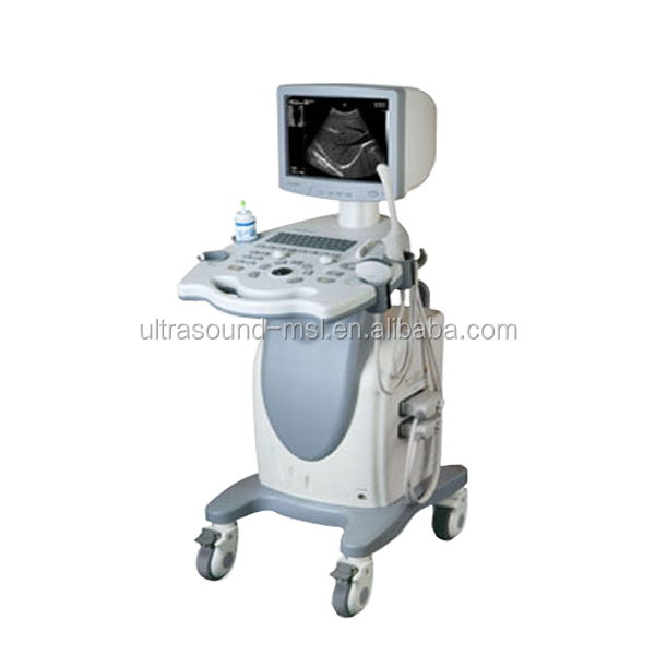 MSLTU02 Best quality veterinary 3d 4d ultrasound machine with trolley