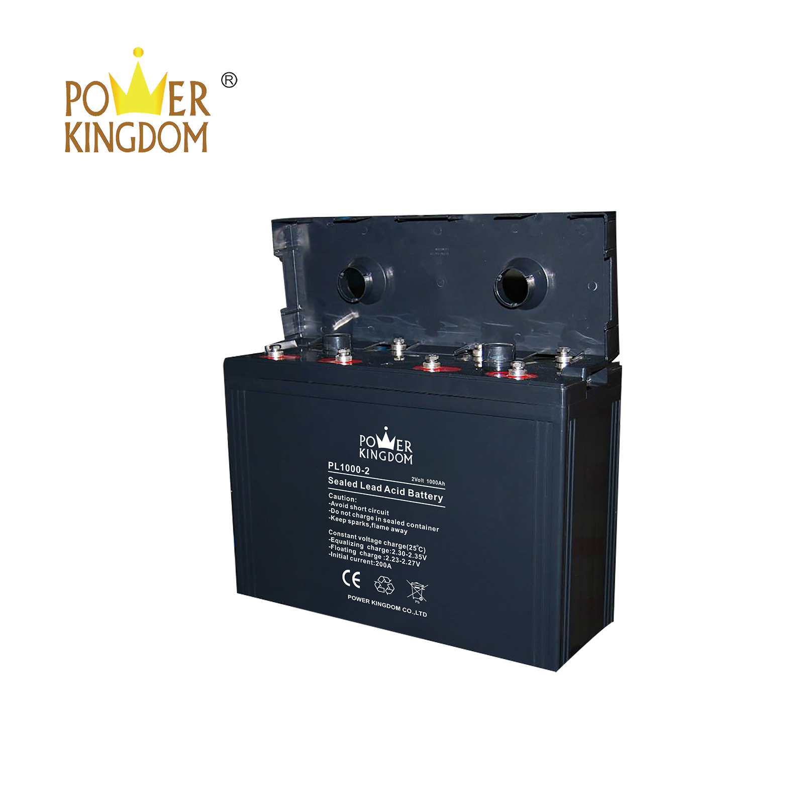 Power Kingdom charging agm batteries with standard charger manufacturers electric toys-2