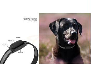 Dog Cat Collar Pet ID Locator GPS Tracker GSM Tracking Waterproof,gps tracking chip