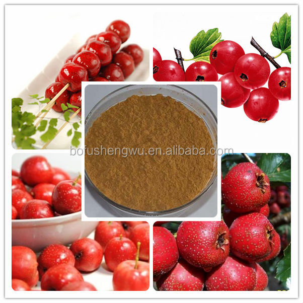 Factory direct supply with competitive price 100% Natural 25% Flavonoids Hawthorn Berry /Leaf Extract