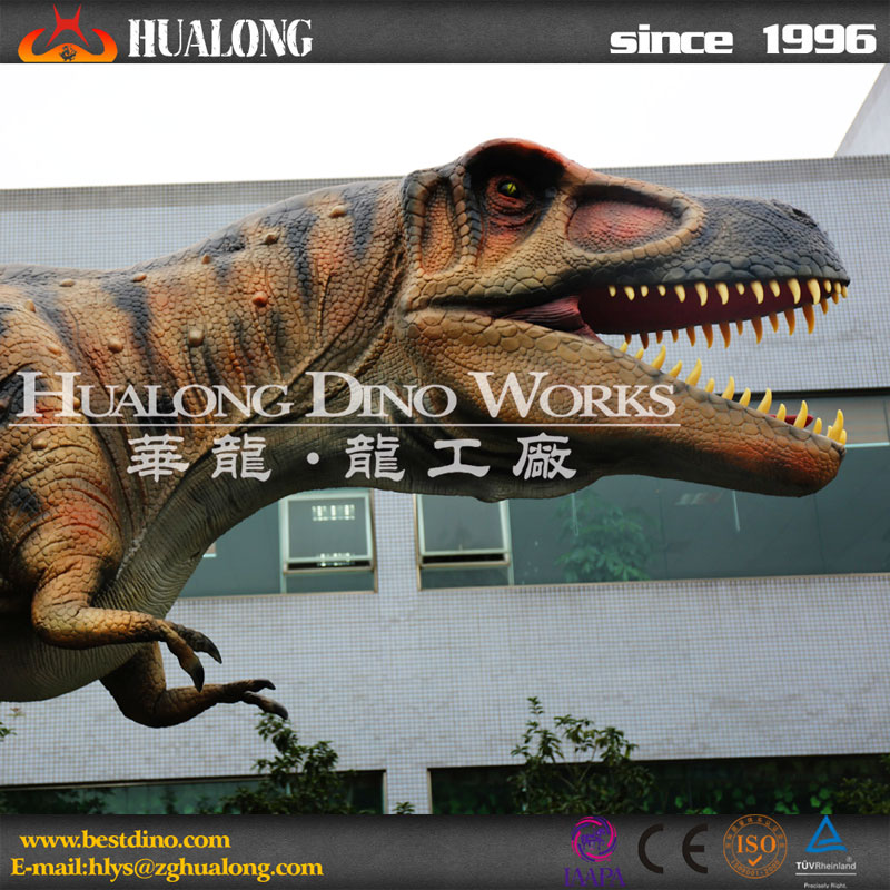 Amusement Games Outdoor Animatronic Sculpture Dinosaur Stone Carving and Dinosaur Skeleton Decoration